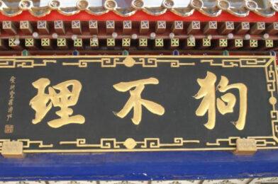 自由落体的天津经济